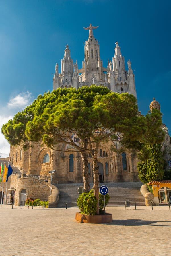 tree del Sagrado Corazn de耶稣 库存照片