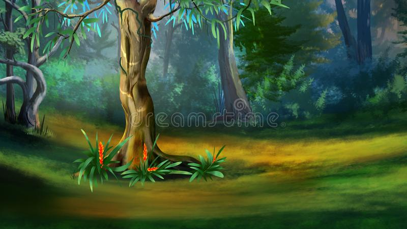 Tree in a Dense Forest in a Summer royalty free illustration