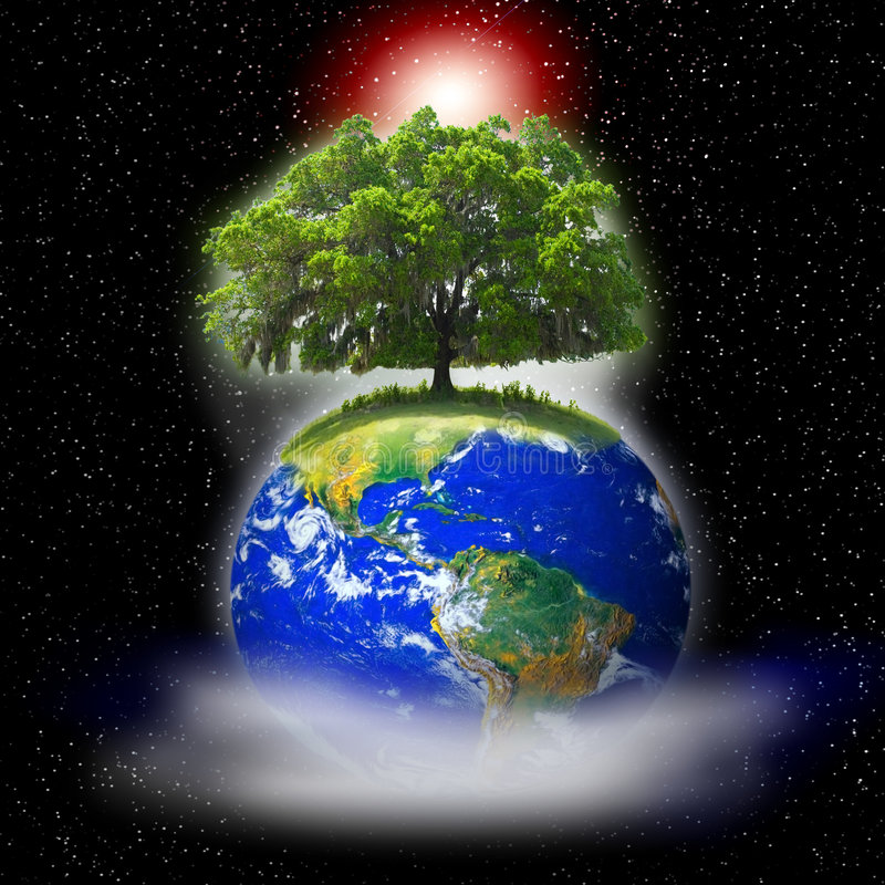 Tree on earth stock photo