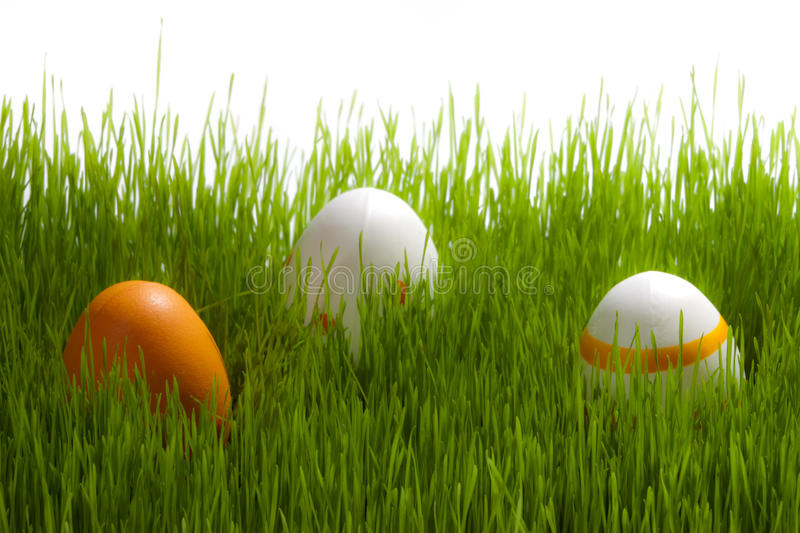 Tree Easter Eggs On Green Grass Stock Photos