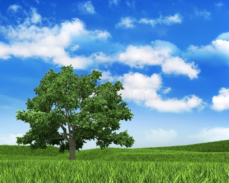 tree för sky för bakgrundsgräsnatur stock illustrationer