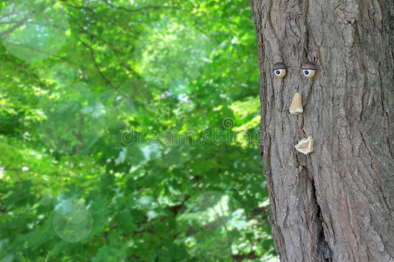 Download Tree With A Face Royalty Free Stock Photos - Image: 25347308