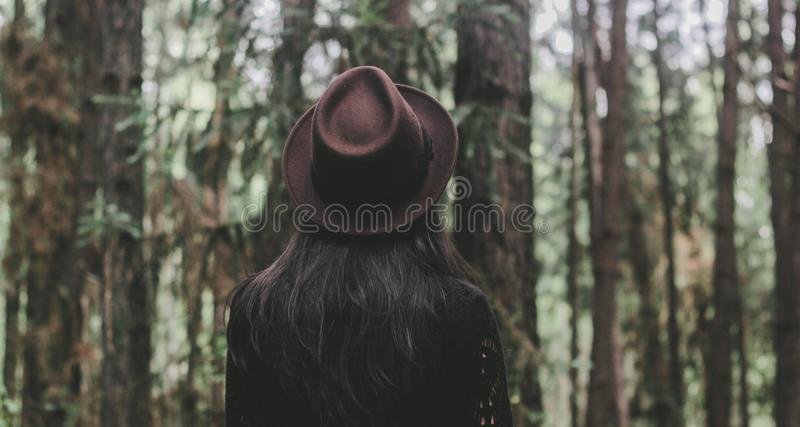 Tree, Forest, Woodland, Girl royalty free stock photo