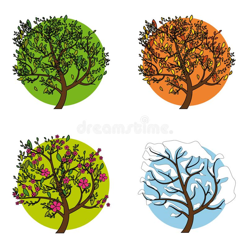 A tree in four different seasons. Set of four trees in different seasons, vector illustration royalty free illustration