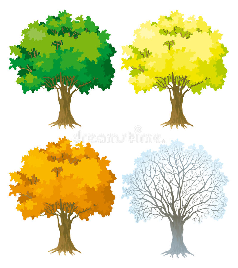 Download Tree at four seasons stock vector. Illustration of isolated - 22354861