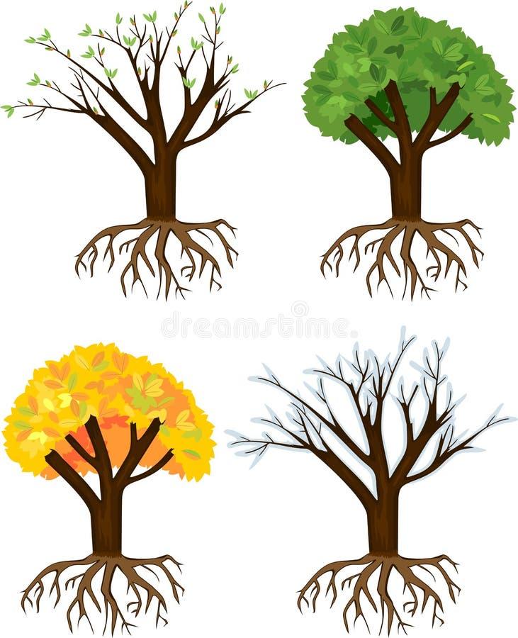 Tree at four seasons: spring, summer, autumn, winter. royalty free illustration