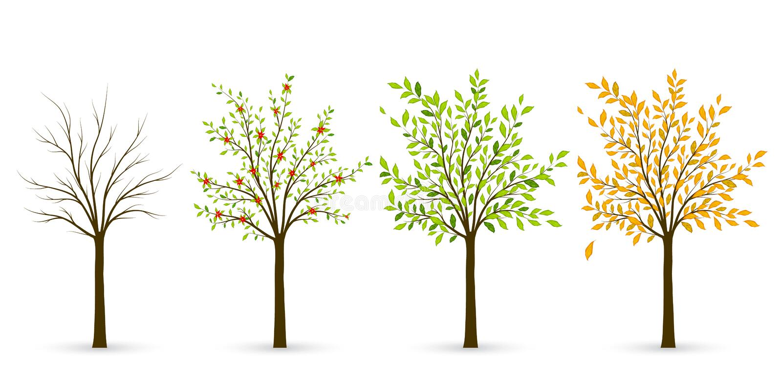 Tree in four seasons - winter, spring, summer, autumn. Vector il royalty free illustration