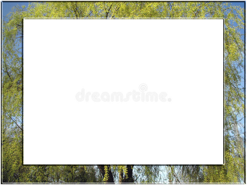 Download Tree frame stock photo. Image of plants, color, cloud - 12920620