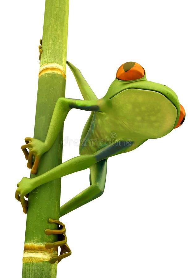 Free Tree Frog On Bamboo Bole Isolated Royalty Free Stock Photos - 20326268