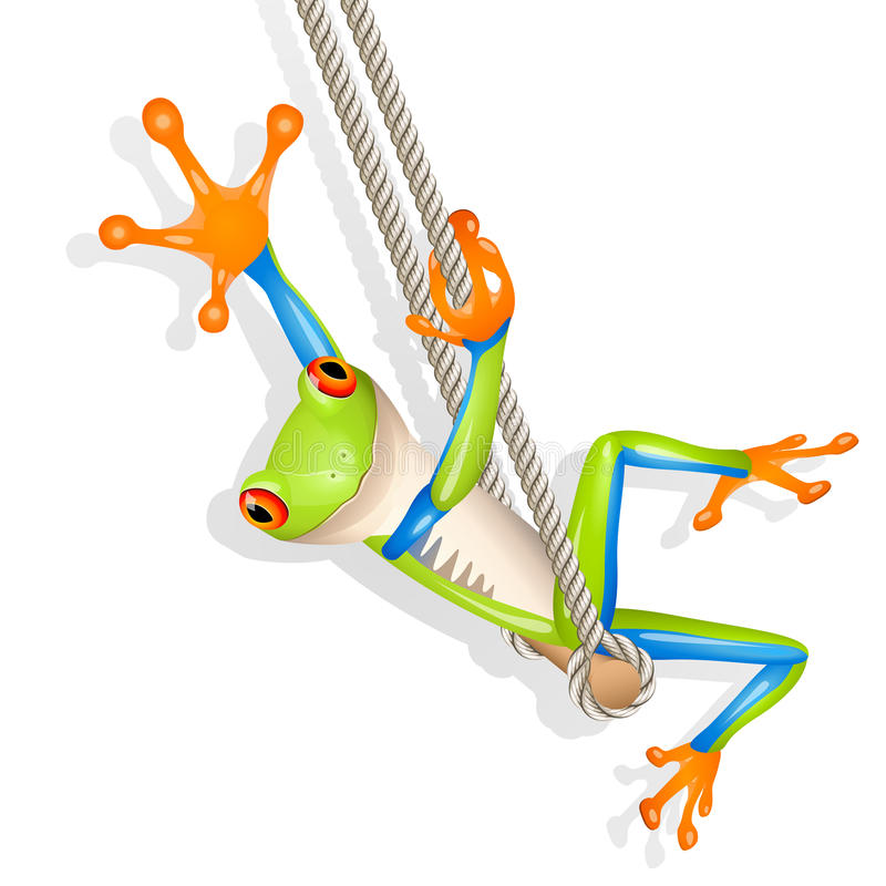 Download Tree Frog On A Swing Royalty Free Stock Photos - Image: 17467098