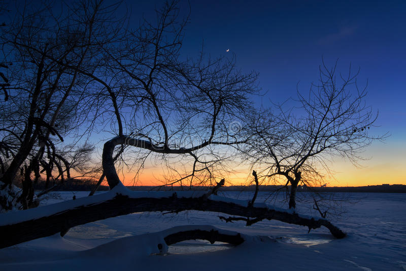 Tree of frozen river. In winter of Dnepropetrovsk Ukraine stock photos