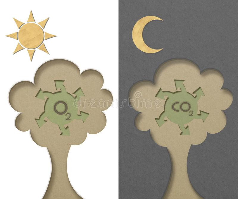 Download Tree Generated Oxygen And Carbon-dioxide Stock Photos - Image: 25074823