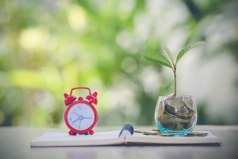 Tree in a glass bottle.Tree on the coin.Growing Business Growth. Coins in glass jar with the small tree.glass jar money saving and royalty free stock images