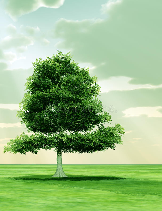 Tree in the god rays stock illustration
