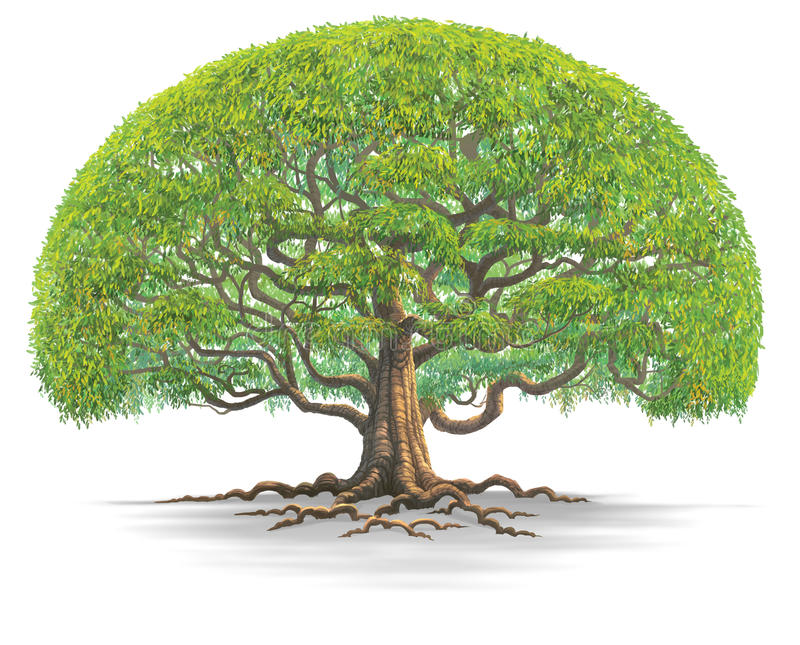 Tree03 grande ilustração stock