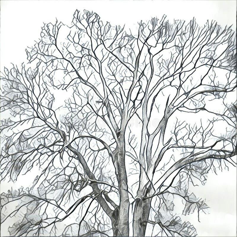 Tree graphic look stock illustration