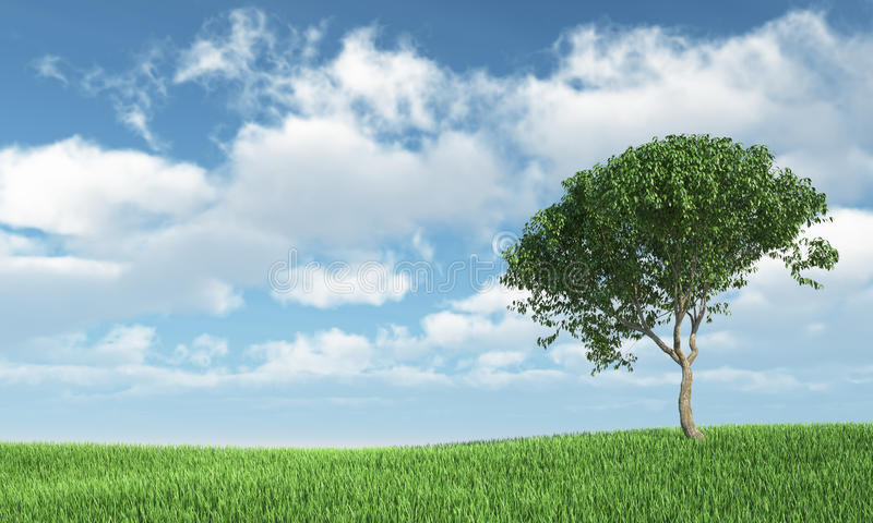 Download Tree on the grass stock illustration. Image of over, panoramic - 26790122