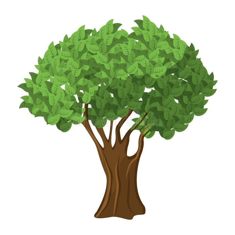Tree green nature. Icon vector illustration graphic design stock illustration