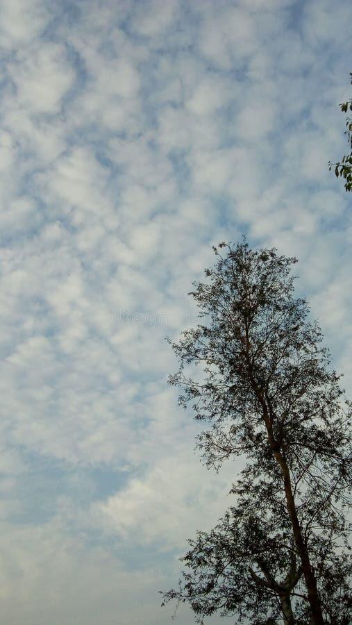 Nature ,sky royalty free stock photo
