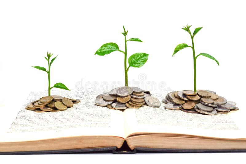 Tree growing on a book. Trees growing from books with coins / A big open book with coins and tree. Reading makes you richer concept stock images