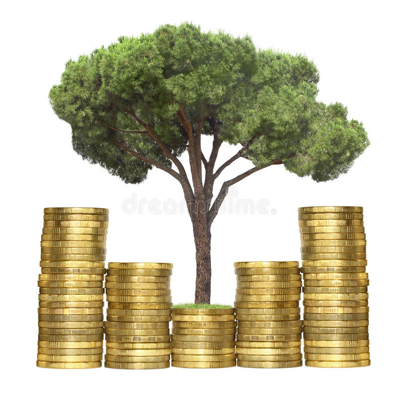 Download Tree growing from coins stock image. Image of business - 25980333