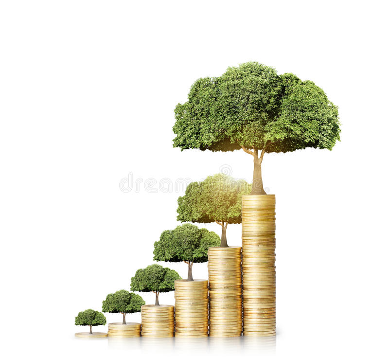 Tree growing from coins. Concept of money tree growing from money stock photo