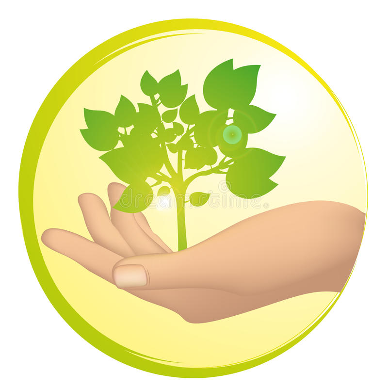 Tree growing in a hand stock illustration
