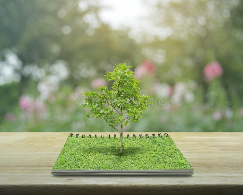 Tree growing from an open book, Ecological concept. Tree growing from an open book on wooden table over blur pink flower and garden, Ecological concept stock photos