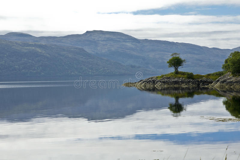 Tree on a headland overlooking Loch Sunart. Rowan tree growing on a rocky headland on the banks of Loch Sunart photographed from the single track B8007 road at royalty free stock images
