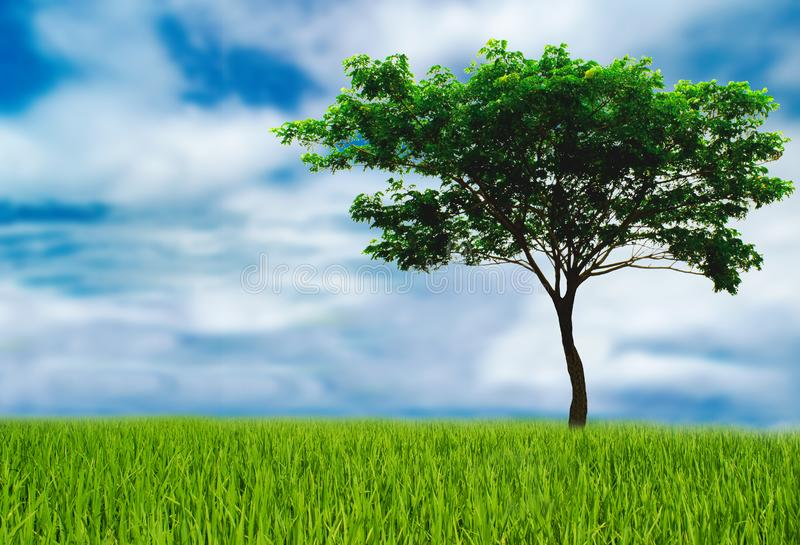 Tree helps reduce the global warming, love the world love trees, earth Day concept please join us for the future. Green tree help reduce the global warming stock image
