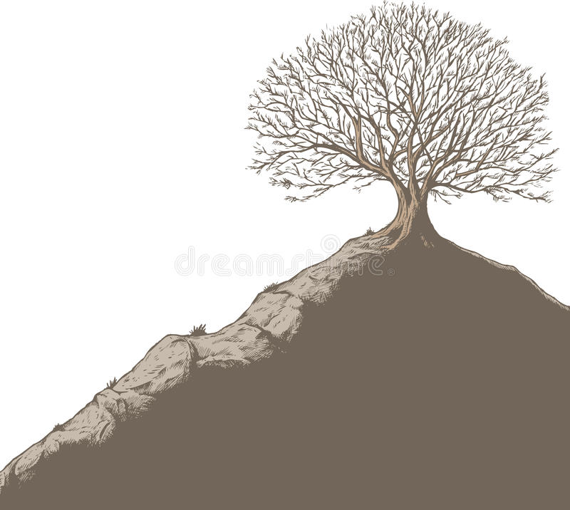 Download Tree on a hill stock vector. Image of tree, hillside - 18787251