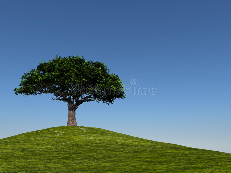 Download Tree On Hill Against Clear Blue Sky Stock Illustration - Illustration of clear, grass: 10142089