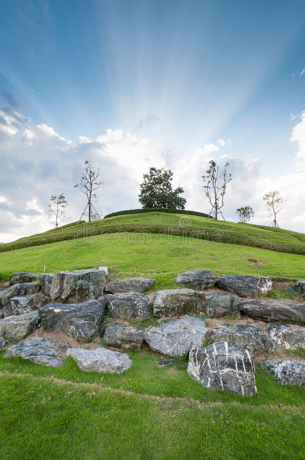 Tree on hill with cloudy blue sky light of sunbeam stock photo