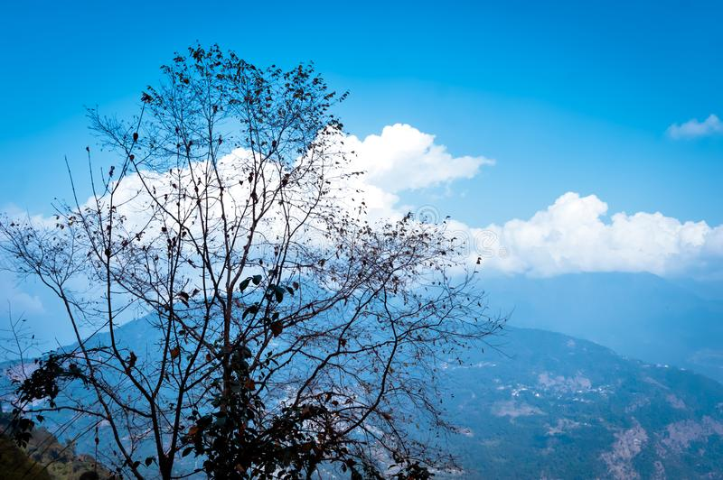 Tree with Himalayan mountain range. Storm cloud floating over in blue sky. Beauty of wild east asian indian nature. Dreamy stock image