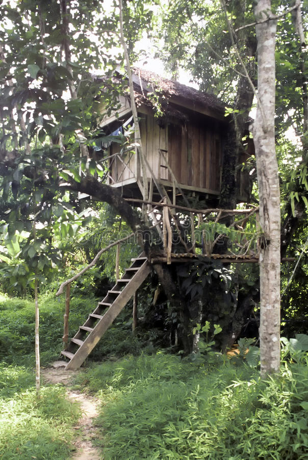 Download Tree house, Thailand stock image. Image of romantic, stair - 13669253