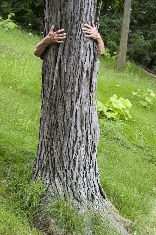 Tree Hugger Environmentalist, Hug Save Environment. Concept of an environmentalist hugging a tree for saving the environment. A tree hugger is a common term to stock images