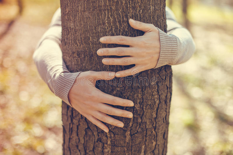 Image result for images of tree hugging