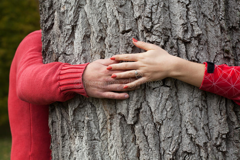 Tree hugging royalty free stock image