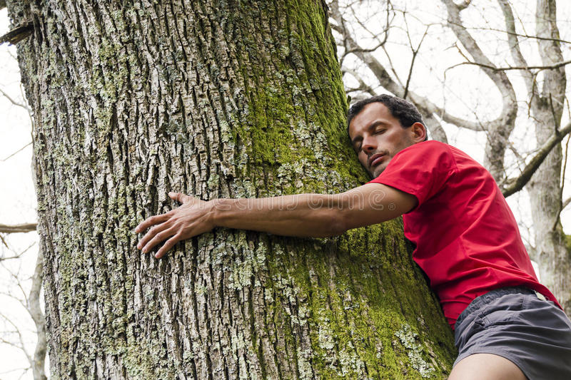 Tree hugging stock photography