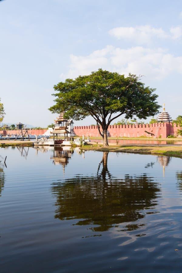 Tree i det Surasri lägret, Kanchanaburi, Thailand arkivfoton