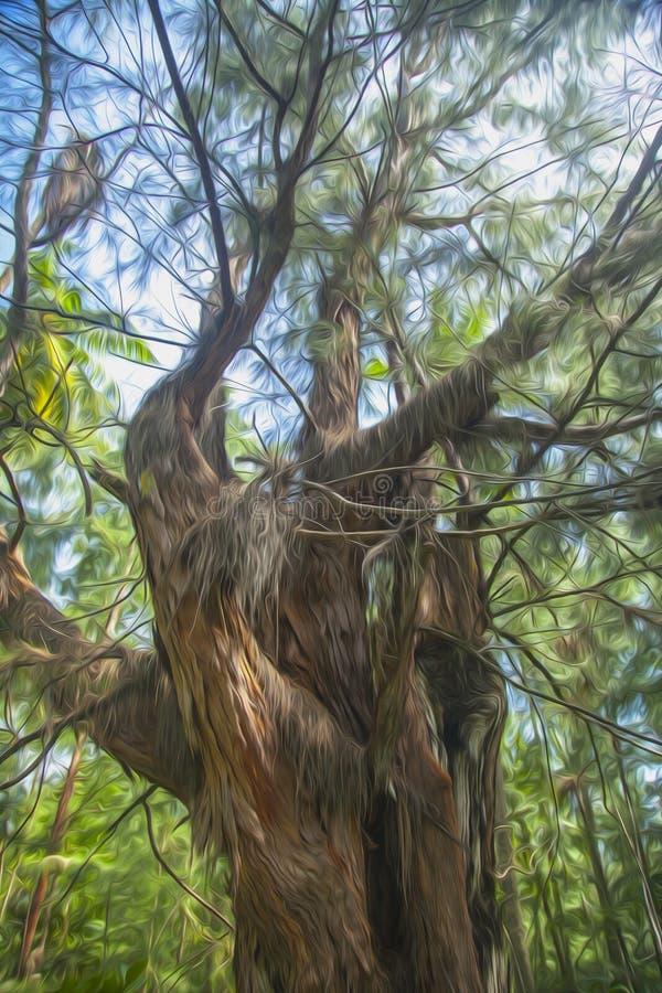 Tree i skogen royaltyfri foto