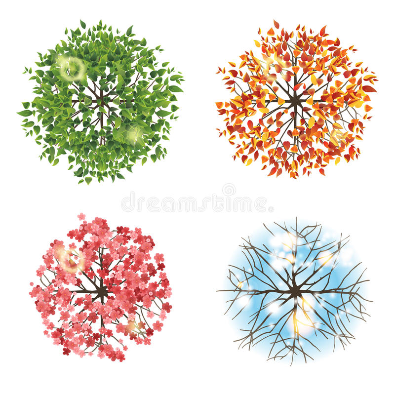 Tree icon in 4 different seasons - top view royalty free illustration