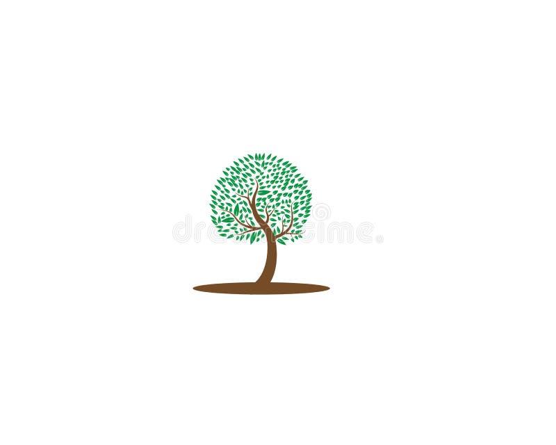 Tree icon logo vector illustration