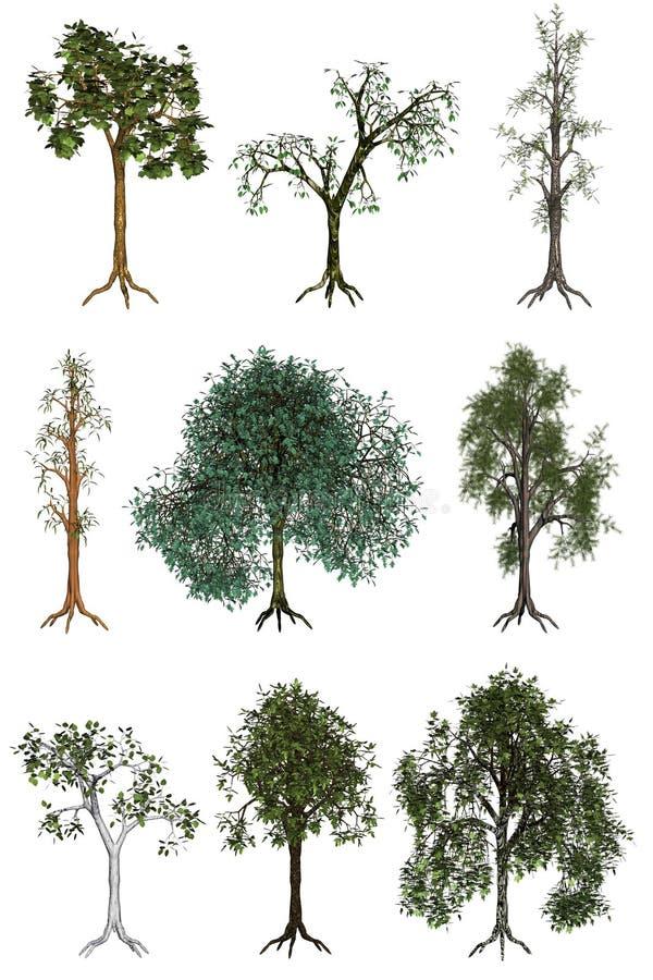 Tree illustrations. 3d rendered nine simple tree illustrations isolated on white royalty free illustration