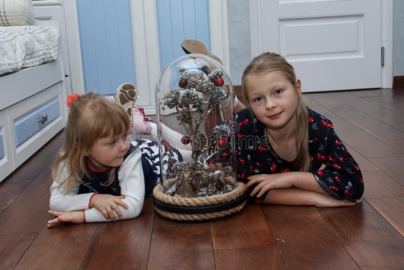 A Magic Tree Under A Glass Cupola stock photo