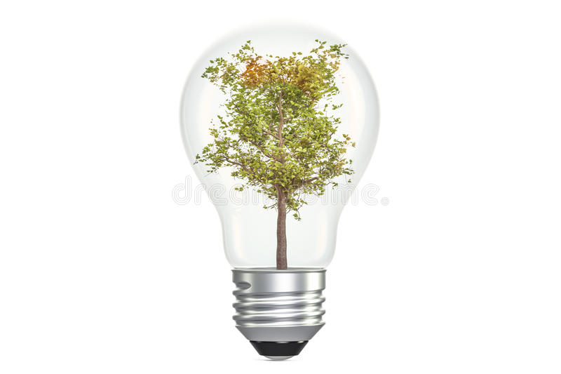 Tree inside light bulb, ecological concept. 3D rendering. On white background vector illustration