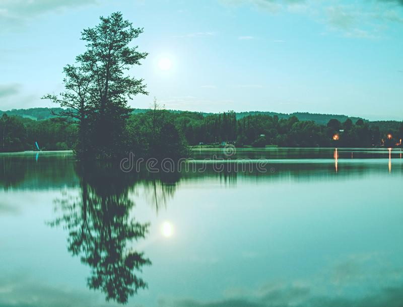Tree on island in middle of lake. Full moon night stock images