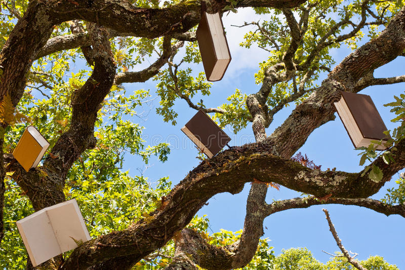 Tree of Books Learning and Knowledge stock photography