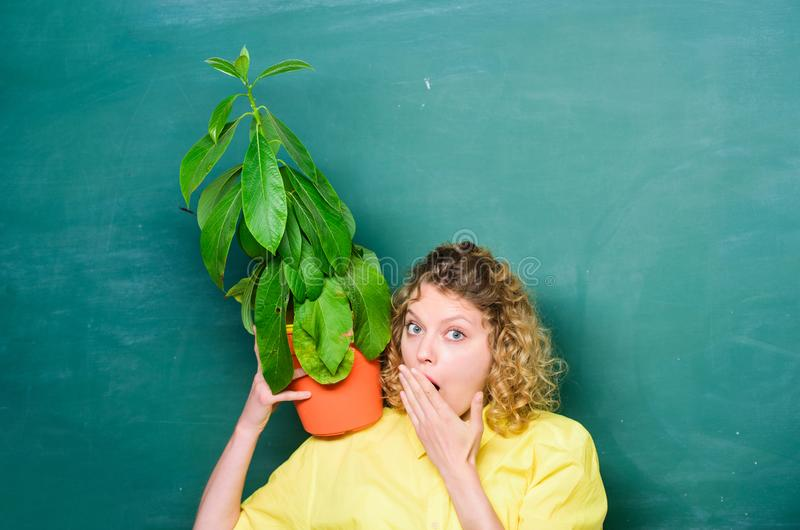 Tree of knowledge. school learning ecology. teacher woman in glasses at biology lesson. environmental education. school. Nature study. surprised student girl stock images