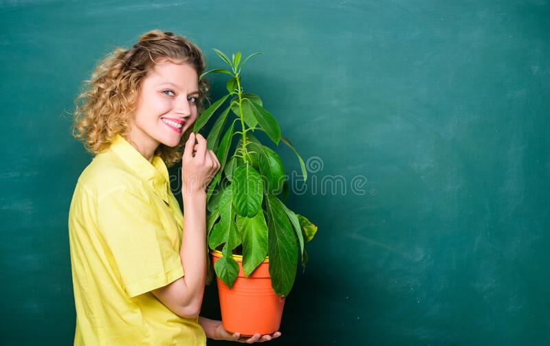Tree of knowledge. school learning ecology. teacher woman in glasses at biology lesson. school nature study. Environmental education. happy student girl with stock photos